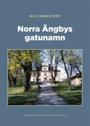 Norra Ängbys gatunamn
